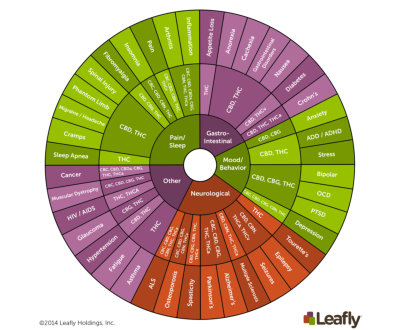 Cannabinoids Wheel